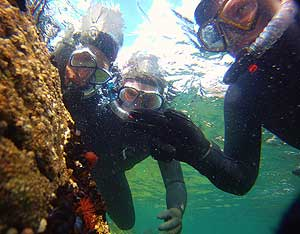 Go Explore Hostel - Adventure West Snorkelling